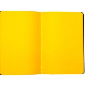 Color Pop Notebooks